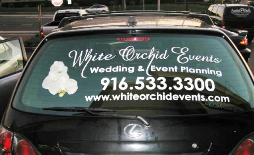Vehical Graphics Vehical Customization Vehical Stickers - Auto graphics for car
